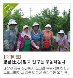 친환경농법으로 재배하는 오디마을