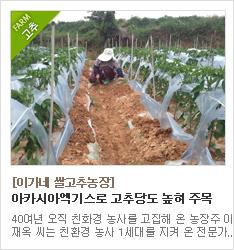 유기농인증을 받은 고추 재배농가 이가네쌀고추농장