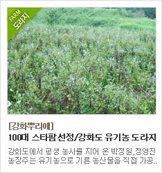 100대 스타팜 선정 강화도 유기농 도라지농장 강화뿌리애 title=