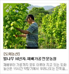 16년차 벌나무 재배가공 전문농원 도화농산