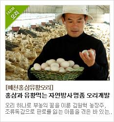 홍삼과 유황을 먹는 자연방사오리 재배농가 예천홍삼유황오리