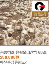 유황오리진액,예천홍삼유황오리