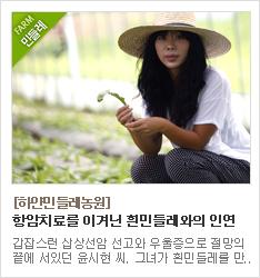 민들레,민들레즙,민들레엑기스,무농약,친환경,하얀민들레농원