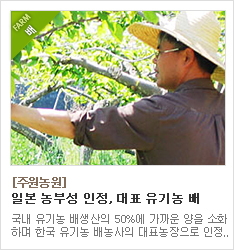 일본 농무성이 인정한 유기농 배농사 대표농장 주원농원