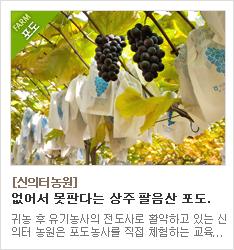 무농약 포도재배를 고수하고 유기농인증을 받은 신의터농원