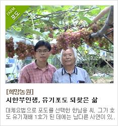 39년간 유기포도재배 연구만을 고집해온 희망농원