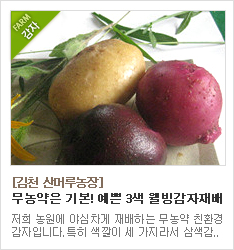 무농약 3색 감자 재배농가 김천 산머루농장