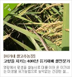 40여년동안 고향에서 미생물농법으로 농사를 지어온 유기재배 쌀농가 이가네쌀고추농장