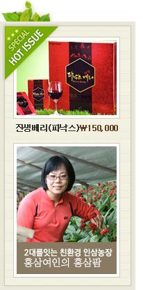 6년근홍삼정,홍삼팜