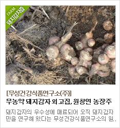 무농약 돼지감자만을 고집하는 무성건강식품연구소